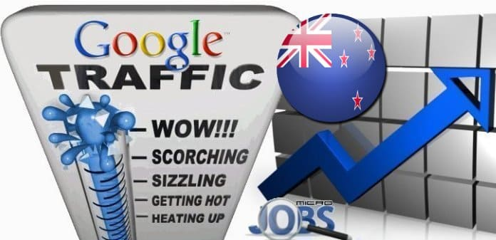 Buy Google.co.nz Traffic